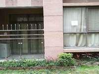 出售罗贵苑一楼,商住皆可,阳台有菜园,房子稀缺,诚意出售