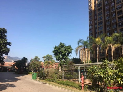全滨海最具性价比的房子 小学旁 好楼层 2.5房 做好到手价36.8万