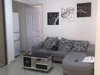 滨海新城 精装1.5房单身公寓 设计合理 自住装修 用的都是好材料 租金可抵月供
