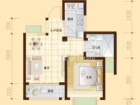 10区49平米单身公寓、精巧紧凑户型、23万特价!特价!