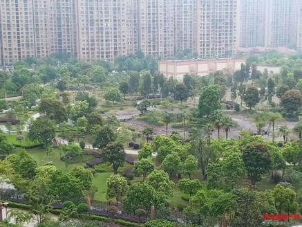 居家四房两卫 公园视野 学区地段 超低价格