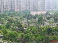 中心地段两房一卫 公园视野 景色宜人