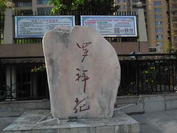 罗祥苑(5区)