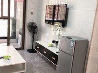 出租:13区精装单身公寓 现代风装修 看房随时